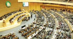 الاتحاد الإفريقي يعلن «التعليق الفوري» لعضوية مالي